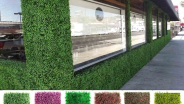 Artificial Vertical Garden Delhi