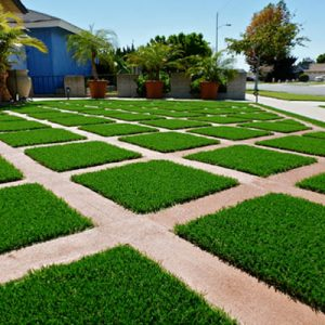 Artificial grass for backyard