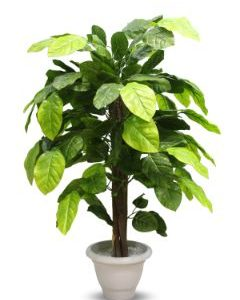 AG - Artificial Plants Banyan