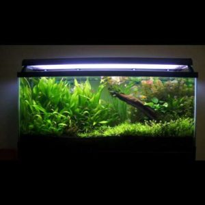 Artificial grass for aquarium,